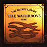 The Secret Life Of The Waterboys 1981-1985(1994)