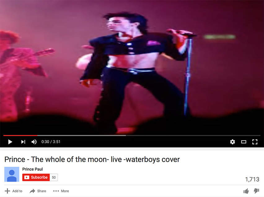 Prince's cover of Whole of the Moon